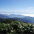 横川山より南アルプス南部
